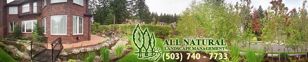 All Natural Landscape